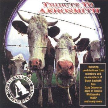 VA - Tribute To Aerosmith (1999)
