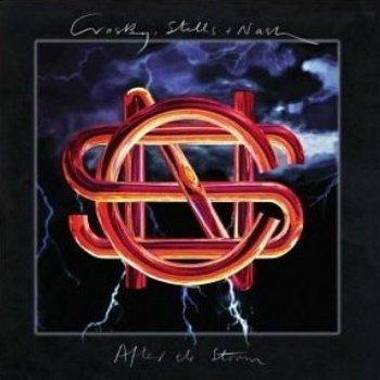 Crosby, Stills & Nash - After The Storm (1994)