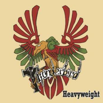 thunderbird-album-cover-e1475061214899