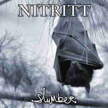 Nitritt - Slumber (2015)