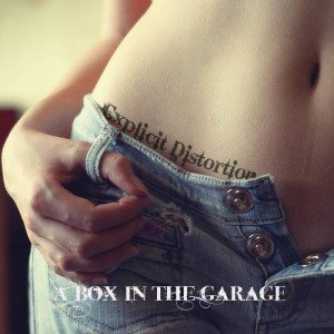 Explicit Distortion - A Box In The Garage