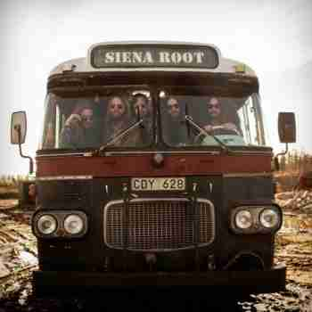 Siena Root - Discography