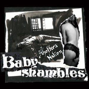 babyshambles_shotters