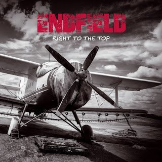 endfield_cover